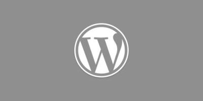WordPress主题开发给分类栏目及标签添加自定义字段教程