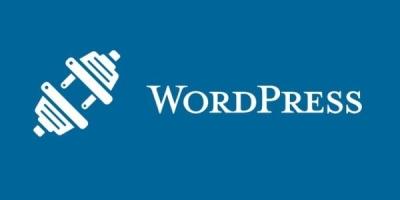 WordPress更换主题对网站SEO的影响有哪些方面?如何做能避免不必要的损失呢?