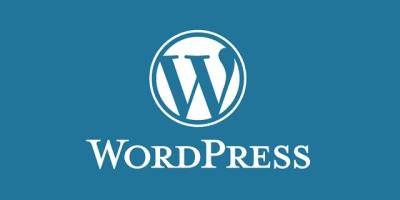 使用纯代码移除WordPress版本号教程