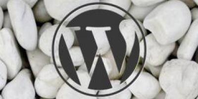 WordPress开发函数add_new_user_to_blog()