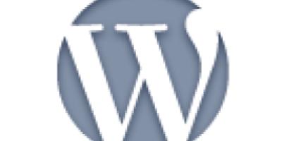 获得评论编辑链接WordPress函数edit_comment_link
