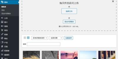 将外链图片添加到媒体库中的WordPress插件External Media without Import