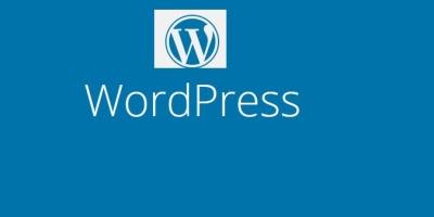 如何修复WordPress调试错误?