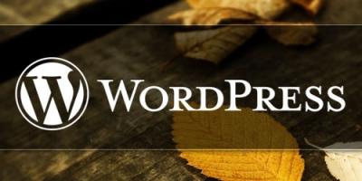 检查用户是否登录WordPress教程