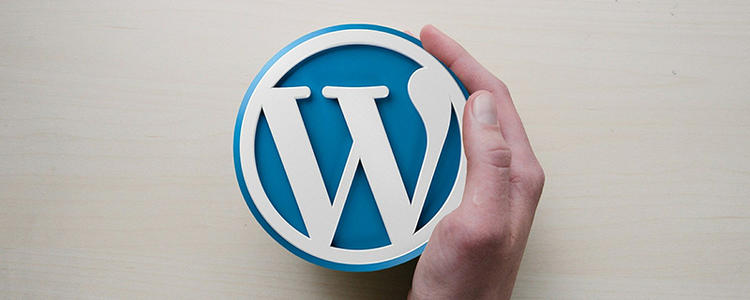 E7C源码站:WordPress新手教程入门:建站前的准备模板免费下载