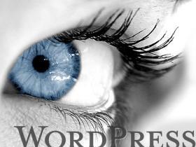 网站可以频繁更换WordPress主题? (https://www.wpzt.net/) 帮助支持 第1张
