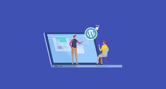 去掉分类链接中的category前缀WordPress插件 (https://www.wpzt.net/) WordPress插件 第1张
