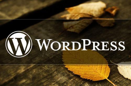 检查用户是否登录WordPress教程 (https://www.wpzt.net/) WordPress基础教程 第1张
